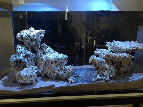 Tips And Tricks On Creating Amazing Aquascapes  Page 49