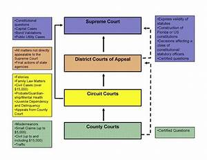Florida & Federal Appeals Process | Appellate Court ...