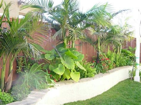 51 Best Gtp  Tropical Paradise Backyard Images On