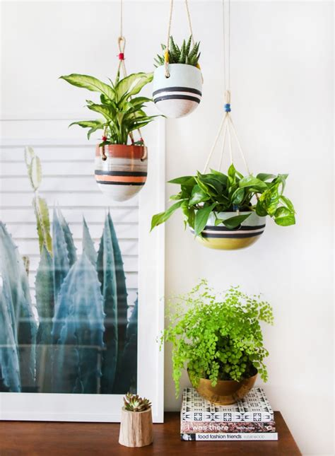 An Indoor Hanging Garden With Anthropologie [a Howto. Contemporary Lighting Fixtures. Ceramic Tile Vs Porcelain Tile. Navy Blue Couch. Chair Swings. Kitchen Cabinets Orange County. Home Builders Jacksonville Fl. Mid Century Modern Light Fixtures. Entryway Rugs