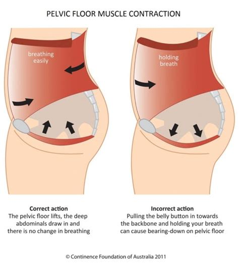 5 ways to strengthen your pelvic floor ironmum karla