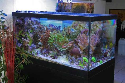 meuble aquarium 500 litres