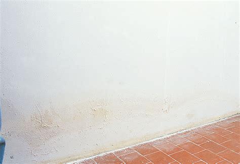 sur murs int 233 rieurs dip etanch