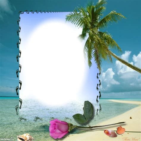 montage photo quot cadre palmier quot pixiz