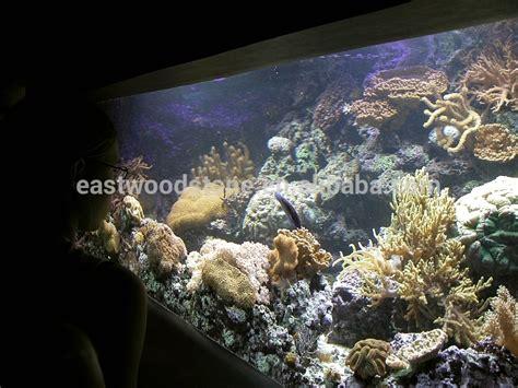 aquarium lava volcanic eco friendly