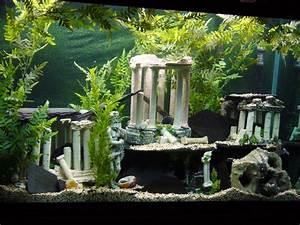 Coole Aquarium Deko : tank examples 110gallon atlantis themed hey every one please look and read my ~ Markanthonyermac.com Haus und Dekorationen