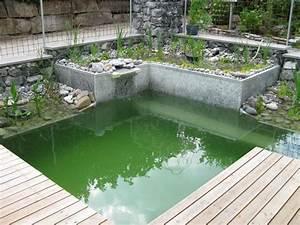 Badeteich Im Garten : die besten 17 ideen zu naturschwimmteich auf pinterest schwimmteich moderne pools und graues ~ Markanthonyermac.com Haus und Dekorationen