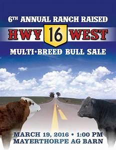 6th Annual Hwy 16 Multi-Breed Bull Sale by Conntrast ...