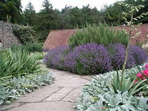 Mediterraner Garten Winterhart : gestalten mit lavendel staudeng rtnerei gai mayer ~ Markanthonyermac.com Haus und Dekorationen