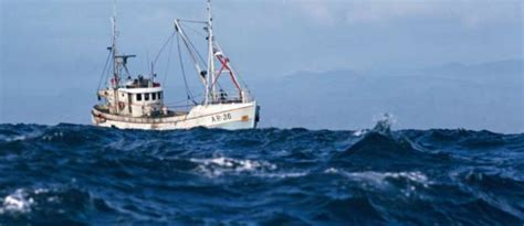 How Much Do Phoenix Bass Boats Cost by How Much Does A Crab Fishing Boat Cost