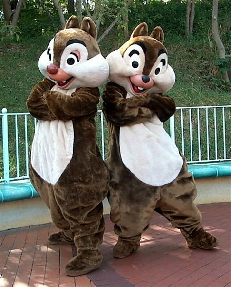 Chip N Dale Costume by I M Awkward You Re Gorgeous Wait What The Disney