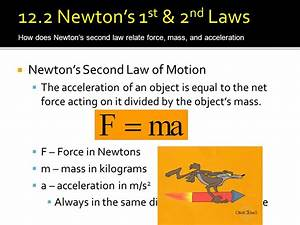S-24 Define the following terms A. Weight B. Gravity C ...