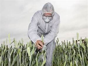 WHO Glyphosate Report Ends Thirty Year Cancer Cover Up ...
