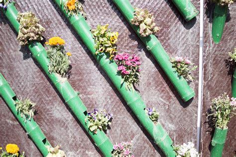 Vertikaler Garten Selber Bauen » Schritt Für Schritt Anleitung