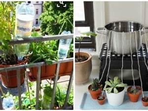 Pflanzen Bewässern Mit Plastikflasche : blumen und pflanzen automatisch bew ssern eat smarter ~ Markanthonyermac.com Haus und Dekorationen