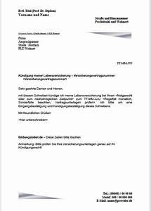 Maklervertrag Kündigen Und Verkauf An Interessent : vorlage und muster archive ~ Markanthonyermac.com Haus und Dekorationen