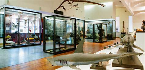 museum aquarium de nancy galerie de zoologie