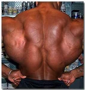 Wide Back