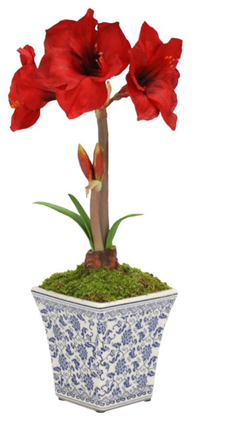 amaryllis in chinoiserie pot traditional artificial flower arrangements by winward designs