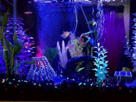 glofish aquarium look at the volcano finding nemo haha bachelorette pad p