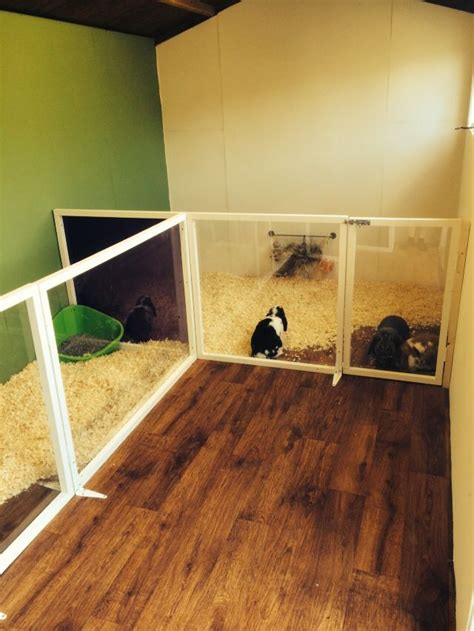 100 best 25 run in shed best 25 rabbit shed ideas on bunny sheds bunny hutch