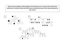 A2 Pedigree Diagram Analysis Activity Genetics By Scienefun  Teaching Resources Tes