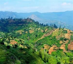 Sri Lanka Immobilien : tui sri lanka ~ Markanthonyermac.com Haus und Dekorationen