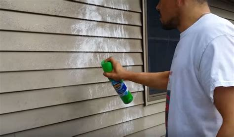 Insulated Vinyl Siding, Mastic Vinyl Siding And Red Carpet Hotel Fort Lauderdale Florida How To Remove Latex Paint Stain From Payless Cleaning Bakersfield Do You Get Cooking Oil Out Of Man Flooring Orange Park Fl Loose Cape Town Fiber Care Atlanta Live Stream Grammys 2017