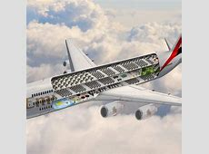Emirates' world's largest plane to have pool, park
