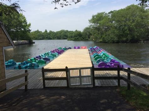 Paddle Boats Long Island by Paddle Boats Picture Of Belmont Lake State Park North