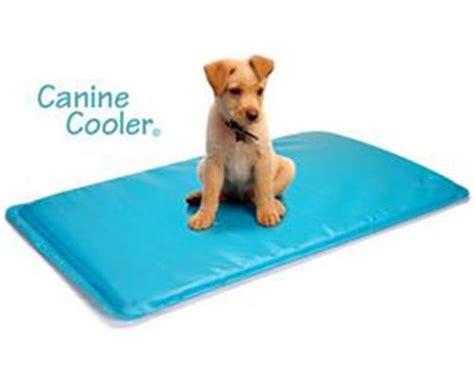 canine cooler tapis rafraichissant pour chien 224 m 233 moire de forme