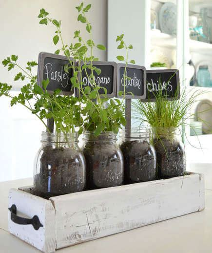 10 Indoor Garden Ideas That Are Cheap And Easy Plant
