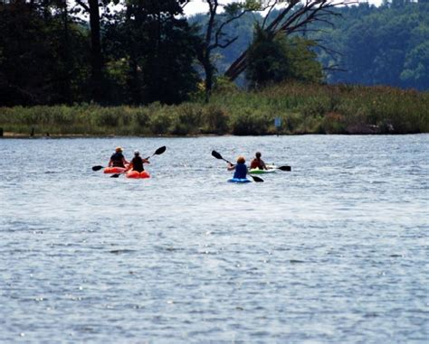 Pedal Boat Baltimore by 40 Worth Of Canoe Kayak Pedal Boat Paddle Board Or