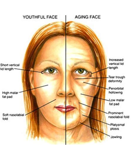 Do You Know Why Your Face And Eyes Are Aging?  Easy Eye. Hazardous Waste Signs Of Stroke. Sandwich Board Signs Of Stroke. Cetus Signs Of Stroke. Iphone Signs Of Stroke. Pedestrian Crossing Signs Of Stroke. School Clinic Signs. Older Signs. Naturally Signs