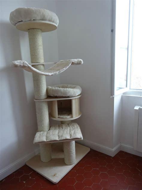 arbre chat pour maine coon
