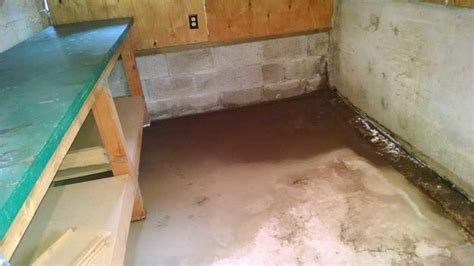 Water Coming Through Basement Wall In Beaverton One Bedroom Apartments In Columbus Ohio Washington Dc Hotel Suites 2 Funky Lights For 4 Cabins Pigeon Forge Tn Old Wood Furniture Cheap Bedrooms Rent Window Treatments Accessories Online