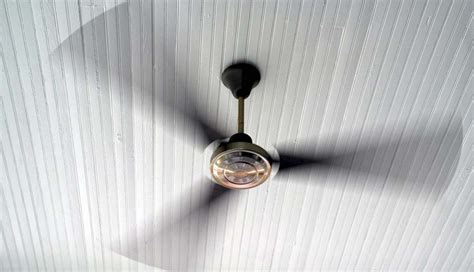 why your ceiling fans should be turning counterclockwise in summer be well philly