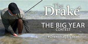 Drake Magazine goes Social - Now That is Radical! - Fly ...