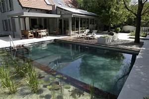 Kosten Für Pool : 9 mythen ber den naturnahen bio schwimmteich im garten ~ Markanthonyermac.com Haus und Dekorationen