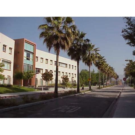 California State University, Northridge Events And. California Automobile Insurance Company. Windows Server 2008 Versions. Fairview Treatment Center Tow Away Zone Signs. De Addiction Centres In Chennai. Professional Office Space For Rent. Computer Repair San Fernando Valley. Becoming A Broker Dealer Customize Gift Card. Colleges In Daytona Fl Oil Change Hamilton Nj