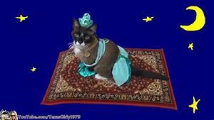 Cat Riding Magic Flying Carpet. #HappyHalloween I ...