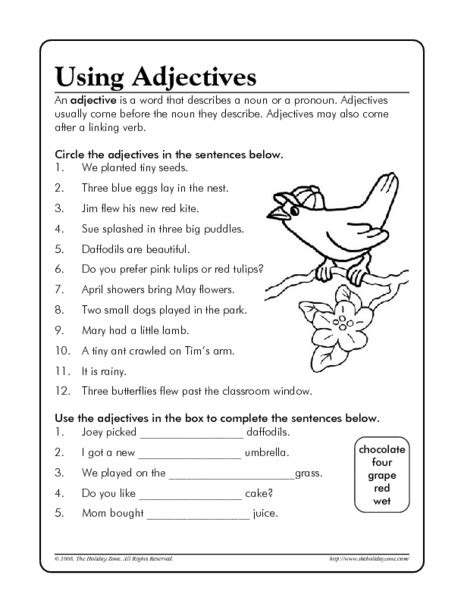 All Worksheets » Third Grade Adjective Worksheets  Printable Worksheets Guide For Children And