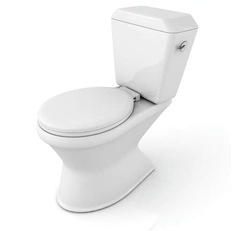who invented the toilet crutchfield dermatology