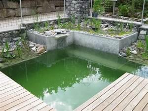Badeteich Im Garten : kleiner schwimmteich swimming pool pond pinterest schwimmteich teiche und g rten ~ Markanthonyermac.com Haus und Dekorationen