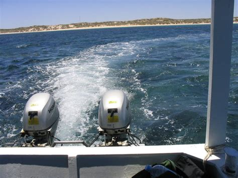 Twin Hull Boats For Sale Perth by Motor Boat Western Australia 171 All Boats