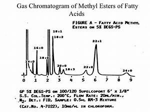 Fatty Acid Methyl Ester Gc Column