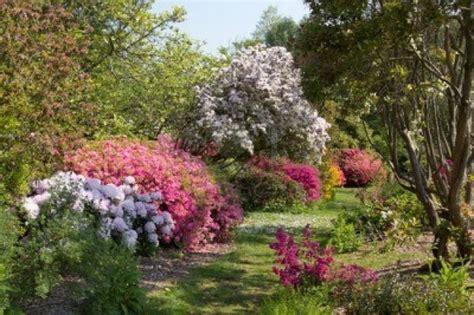 comment faire propre jardin 224 l anglaise