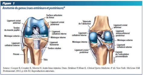 genoux remplacement du genou douleur de genou
