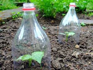 Pflanzen Bewässern Mit Plastikflasche : bew sserung mit pet flaschen swalif ~ Markanthonyermac.com Haus und Dekorationen