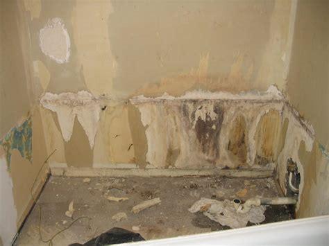 cloison salle de bain pourrie